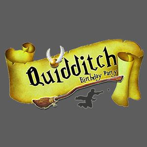 Quidditch Birthday Party